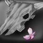 Skull of a Bull and a flower by ShadowXX91