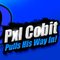 Pxl Cobit in Super Smash Bros For 3DS/Wii U