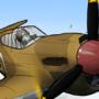 Warhawk in The Sky