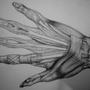 Skinless Hand by Tommyrawr