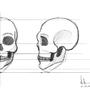 Skull Practise by keroleina