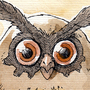 #163_Hoothoot by Manguinha