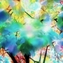 Daydream #1: Trees in Sunlight by BenjaminTibbetts