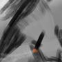 Cigar Night by DeathCards