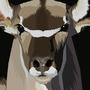 Kudu by DragonChaser123