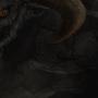 Grimataur by gcsojordc