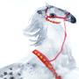 Circus horse II by KattyC