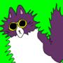 cat one by golfinho