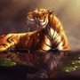 Tiger Serenity by edartstudio7