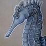 Sea Horse by PaulaHarris
