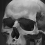 Skull study by SimonT