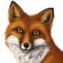 Foxy by Bojeva