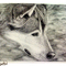Wolf Crosshatch
