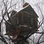 Tree House by 1600
