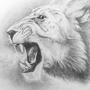 Lion by Pencil-Pony