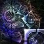 Portal by plantm