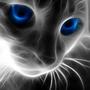 cute cat by boredguy671
