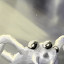 Hairy White Spider by CosminGX