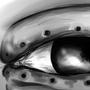Eye by viqqah