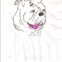 pitbull 27 by spykid39