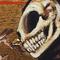 Smoking Cat Skeleton