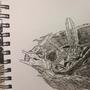 Dragoon by SalemWarlock676