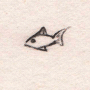 Fish_test by pezzo