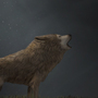 Tundra Wolf by Ydoj