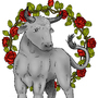 Bull by ShalevZohar