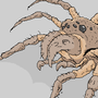 Crail Spider by krimmson
