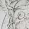 Inktober #1: Owl's wrath!
