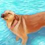 Waterdog by artbycaiti