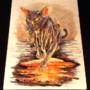 Lava Cat by Mozakade