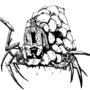 bum spider by spacepickle2