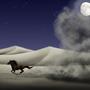 Desert Horse Night by JoannaChlopek