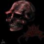 Skull by Manx1
