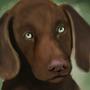 just a dog by Littlepinkmonkey