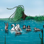 Seven Swans a Swimming by JoannaChlopek