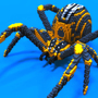 Spider by mematron