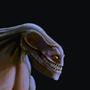 Manociraptor