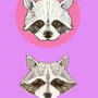 racoons by FleckRassowsky