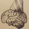 Brain Play