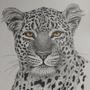 lepard by Mariaan