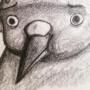 Worried Bird is Worried