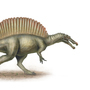 Spinosaurus by Parseh-Designs