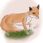 Doodle-Fox by rackerdude