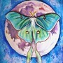 Luna Moth by Elionette