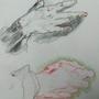Goltzius hand study by yodaddyo