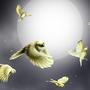 midnight birds by JoannaChlopek