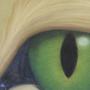 Cat Eye by JellicleJunkyard